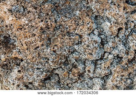 Dark gray texture of sea stone texture