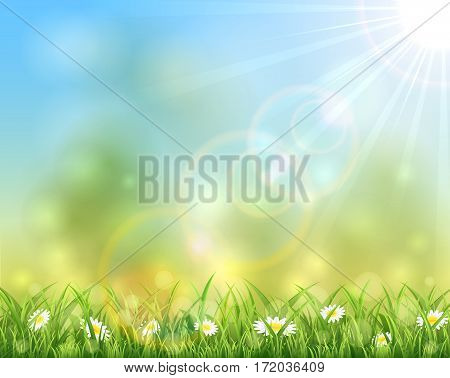 Sunny day, spring or summer nature background with grass and flowers, sun light on blue sky background, illustration.