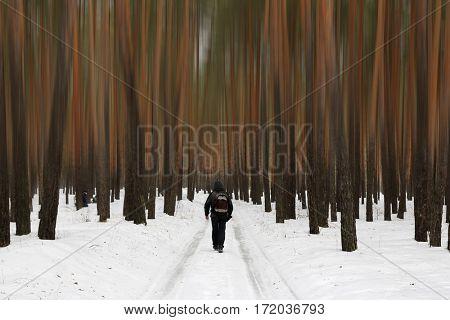 Man walks in fantastic winter forest
