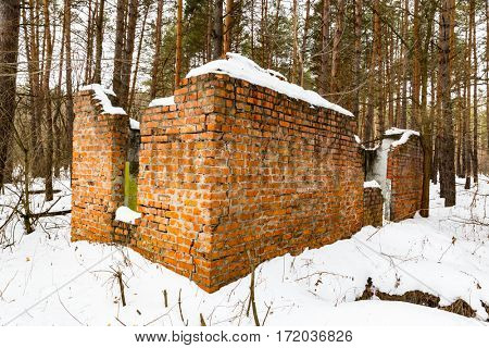 scene with broken house in winter pine forest