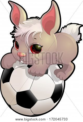 beautiful cute rabbit sitting on the soccer ball