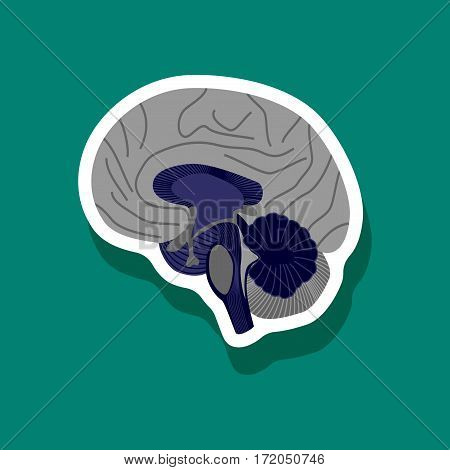 brain paper sticker on stylish background isolated