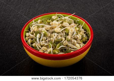 Pea Seeds With Sprouts Close Up