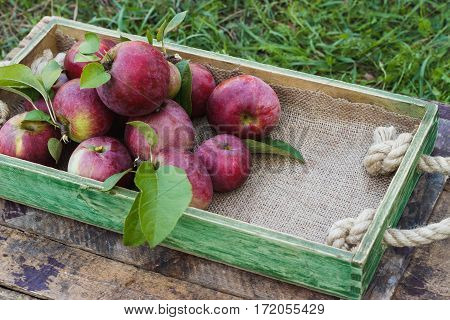 Full Box Of Red Ripe Apples On The Wooden Background