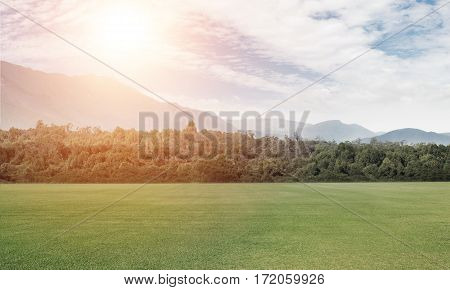 Natural landscape with green field in lights of summer sun