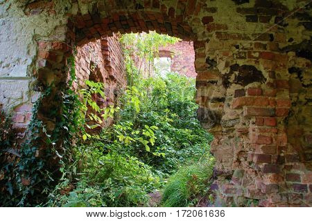 ruins, old brick building in the bushes