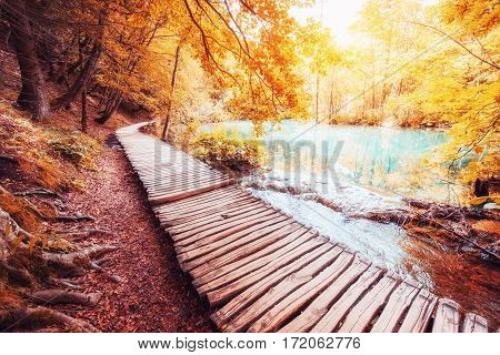 The famous Plitvice Lakes National Park, Croatia, Europe. Bright autumn scene. Instagram tonic effect.