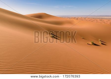 Awesome view over the highest dunes in the Sahara desert Erg Chebbi near Merzouga, Morocco.