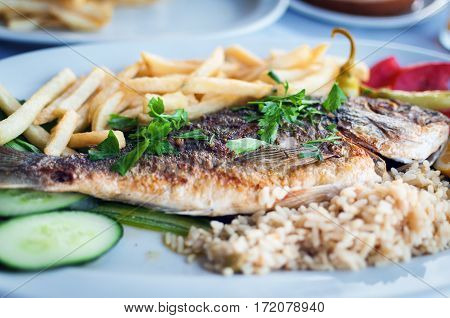 Fried fish with potatoes with vegetables on a white plate at traditional Greek tavern