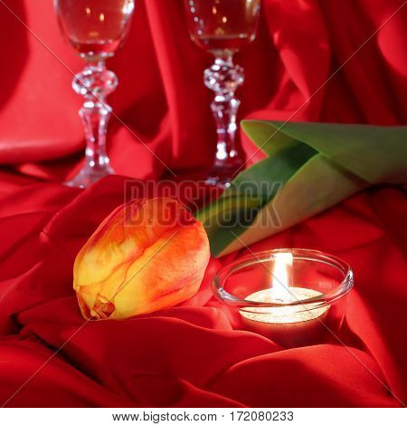 Tulip and candle on a red cloth. Celebratory composition. Valentine's Day, wedding, birthday.
