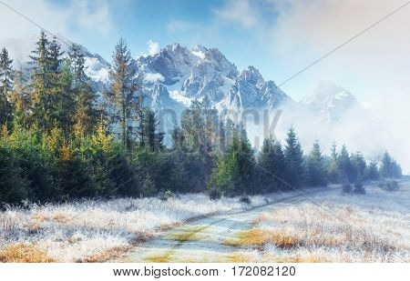 October mountain range in the first winter days. Road to hoarfrost during the first morning sun. Carpathian, Ukraine, Europe.