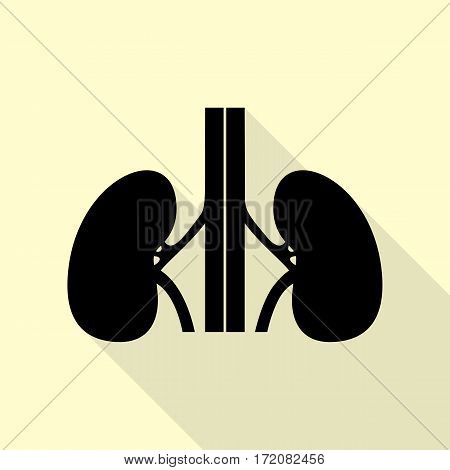 Human kidneys sign. Black icon with flat style shadow path on cream background.