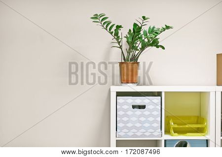 detail of interior - houseplant on rack for documents flat lay copy space