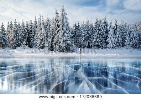 Blue ice and cracks on the surface of the ice. Frozen lake under a blue sky in the winter. The hills of pines. Winter. Carpathian Ukraine Europe