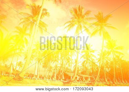 Palm trees at tropical coast vintage style