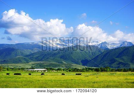 Photo of the Carpathians Mountains Over Cloudy Sky Romania
