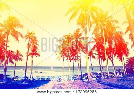 Image of tropical coast vintage style background