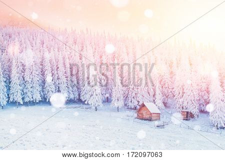 cabin in the mountains in winter, background with some soft highlights and snow flakes. Carpathians, Ukraine, Europe