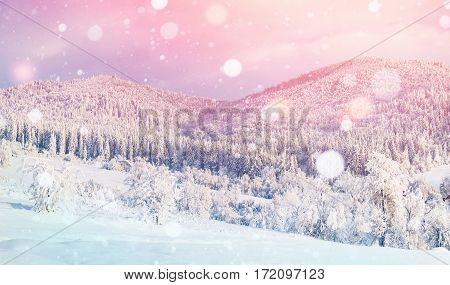 Mystic sunset in the mountains. Photo greeting card. Dramatic and picturesque scene. Bokeh light effect, soft filter. Carpathian, Ukraine, Europe.