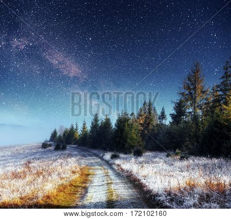 Dairy Star Trek in the winter woods. Dramatic and picturesque scene. Winter road in the mountains. In anticipation of the holiday. Carpathian, Ukraine, Europe