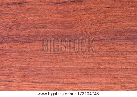 background nature detail of teak wood texture decorative furniture Xylia xylocarpa Taub