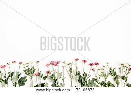 Red and white wildflowers on white background. Flat lay top view. Creative flower background concept.