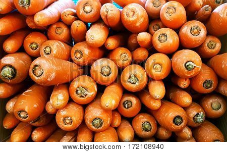 stacks of raw and fresh carrots in the market for sale