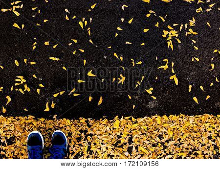 selfie of feet with running shoes on asphalt floor leaf covered in city park