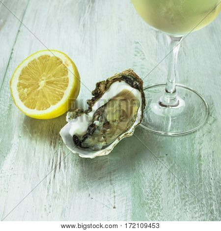 A square photo of freshly opened oysters with a slice of lemon and a fragment of a glass of white wine, on a wooden background texture with copyspace