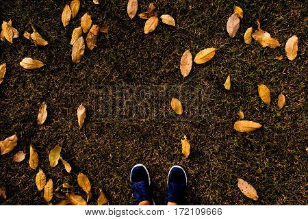 selfie of feet with running shoes on grass floor with leaf covered in city park