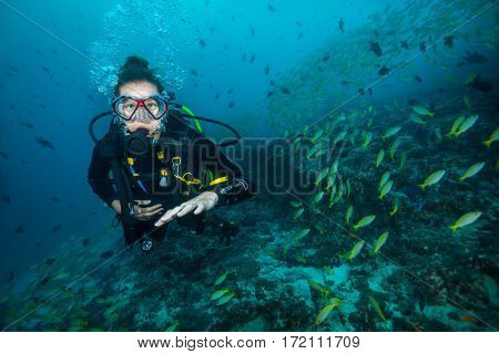 Woman scuba diver exploring sea bottom. Underwater life with beautiful corals and lots of colored fish. Indian ocean, Maldives