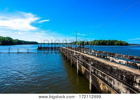 A small dock or gangplank over the sea on mangrove forest and blue sky background.