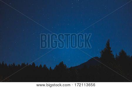 Soft Starlight Over Washington Wilderness