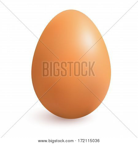 Realistic chicken brown egg with shadow. Isolated on white background. Made with gradient mesh, textured. Vector illustration.