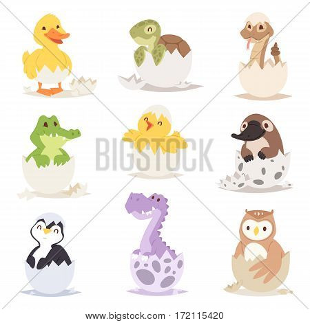 Cute new born animals in eggs easter farm holiday creature little life and young shell small pet nature birthday adorable wildlife poultry tiny character vector illustration. Begin birth newborn baby.