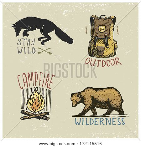 set of engraved vintage, hand drawn, old, labels or badges for camping, hiking, hunting with wild wolf, grizzly bear, capmfire, backpack bag.