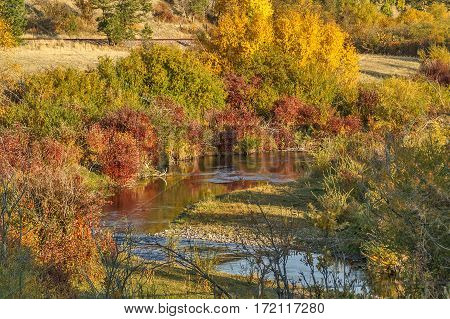 Fall colors reflected along a river in Montana