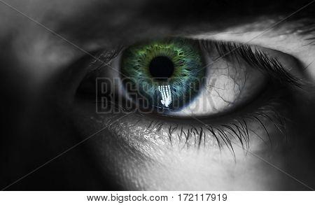 man macro green eyes from lack of sleep veins black and white