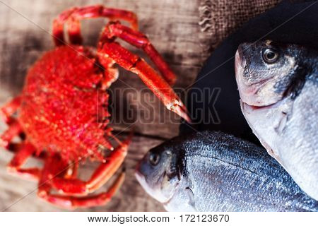 Red Crab / Steamed crab on wooden background. Delicious seafood Red Crab / Steamed crab on wooden background. Delicious seafood
