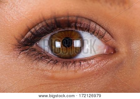Hazel Eyes Images Illustrations Vectors Hazel Eyes