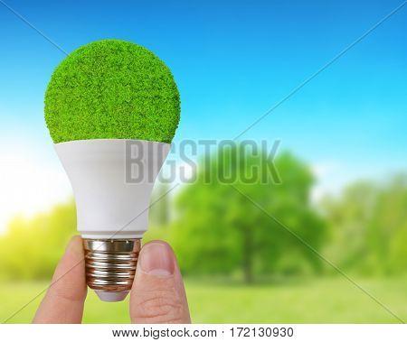 Eco LED bulb in hand. Energy saving lamp.