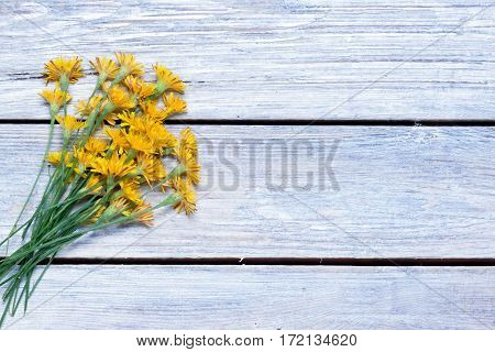 bouquet of dandelions on the boards.simple rustic background,.top view.