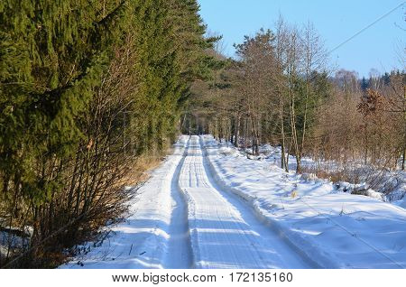 snowy forest road South Bohemia Czech Republic