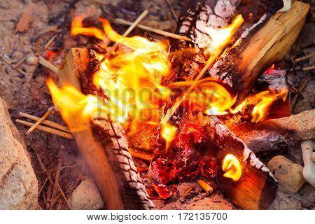 Closeup Of Blazing Campfire Coals