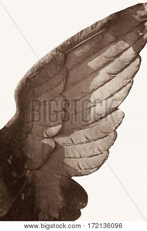 close up wings of angel (fragment of statue)