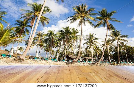 Palm trees at tropical coast with wooden floor