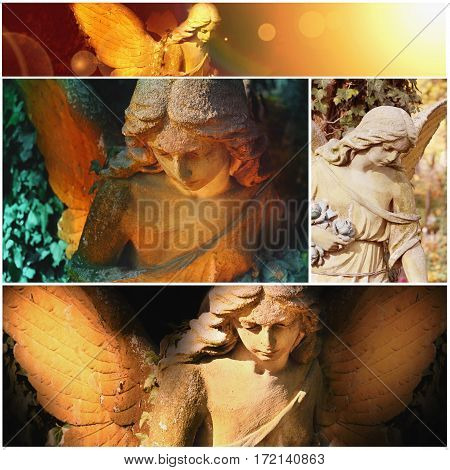 angel in the sunlight (antique statue, portrets)