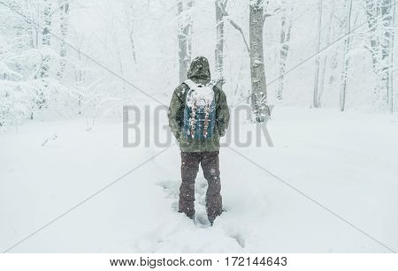 Unrecognizable traveler young man with backpack walking in snowy forest in winter rear view