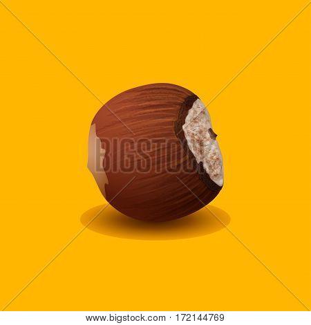 Hazelnut, Ripe Nut Isolated on a Yellow Background, Hard Fruit , Vector Illustration