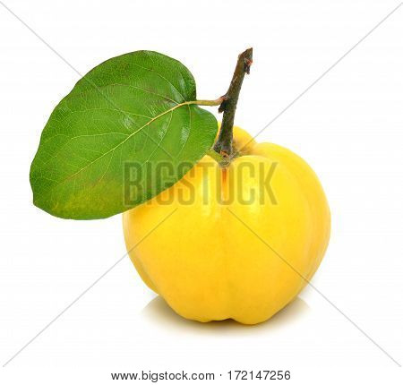 Ripe quince isolated on white background with leaf